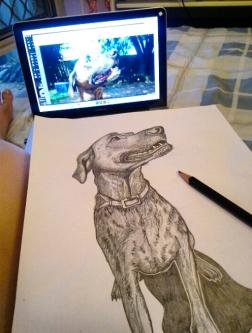 Feels good to draw again! My beautiful boy, Tiger <3