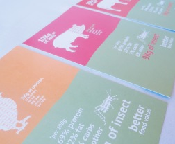 Istd Recipe cards front designs