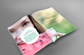 Smoothie challenge Booklet 1