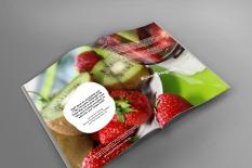 Smoothie challenge Booklet 4